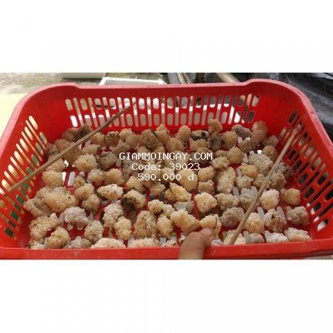 300g Trứng Ốc Bưu Đen Long Mỹ Loại X3 95% nở