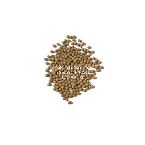 [A Đậu Shop] Đậu nành (đậu tương) khô 500g