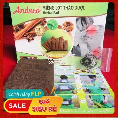 Miếng Lót Thảo Dược Thiên Nhiên ANDUCO giúp giảm đau lưng. Đánh tan mỡ bụng, eo, đùi